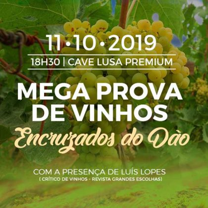 Wine Tasting – Encruzados do Dão